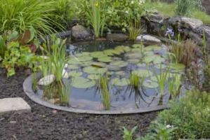 13 Gorgeous Backyard Pond Designs Ideas 19