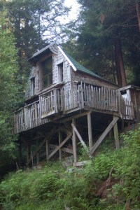 17 Beautiful Mountain Cabin Plans Hillside 16