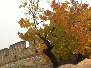Autumn at the Great Wall--a do!