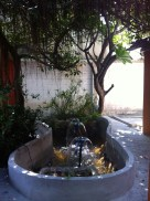 A soothing garden fountain to set the tone.
