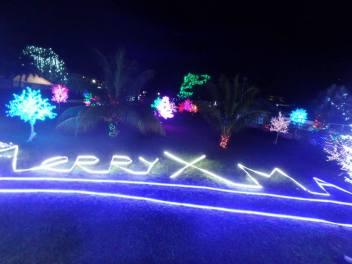 Christmas wishes a la Surinamese lights.