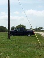 And no Texas institution would be complete without at least one pickup truck.