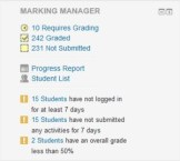 Marking Manager Dashboard