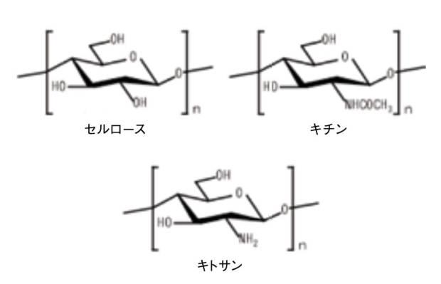 セルロース、キチン、キトサンの構造式。 互いに構造が似ている。