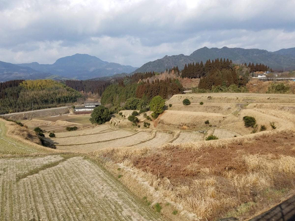リバネスは、熊本県菊池市の平成29年度アグリ技術実証調査事業の委託を受けて、市内農家の調査を実施しています