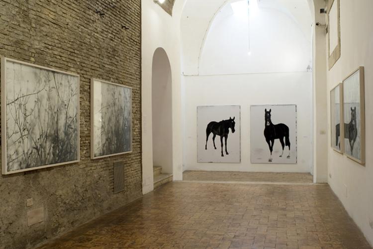 retrospettiva Noir et Blanc Villa Medici Roma 2008