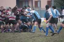 Velate2011_036