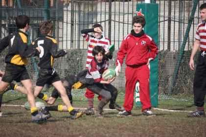 Bruco2011_046