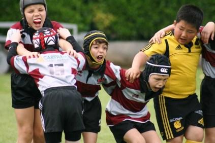 Rugby Under 10 Calvisano 6 05 2012 235 (2)