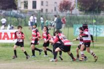 U10_Parma2014_0109