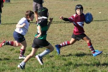 U8 Rugby Cesano 2017 (17)