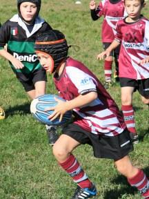 U8 Rugby Cesano 2017 (3)