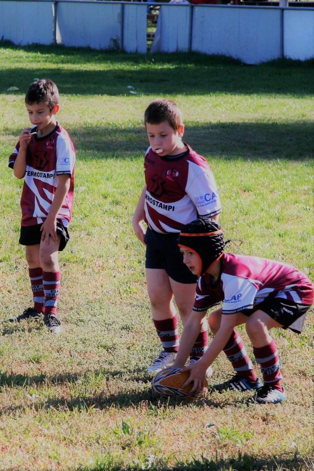 U8 Rugby Cesano 2017 (32)