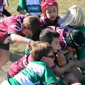 U8 Rugby Cesano 2017 (35)