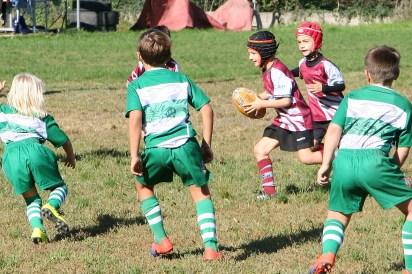 U8 Rugby Cesano 2017 (38)