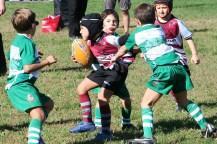 U8 Rugby Cesano 2017 (42)