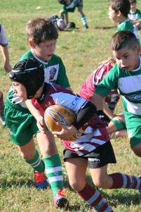 U8 Rugby Cesano 2017 (50)