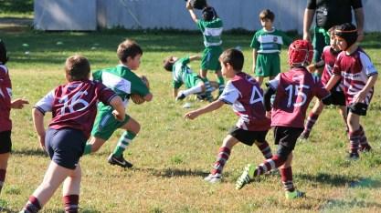 U8 Rugby Cesano 2017 (51)