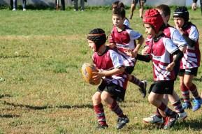 U8 Rugby Cesano 2017 (52)