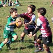 U8 Rugby Cesano 2017 (55)