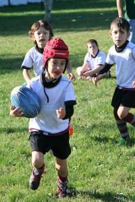 U8 Rugby Cesano 2017 (7)