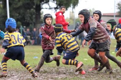 Torneo Pavia 2018 (118)
