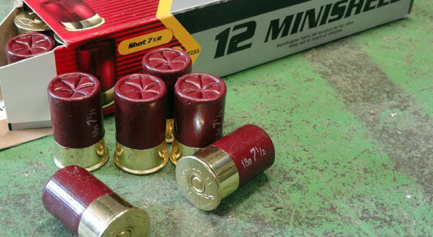 Aguila Minishells: More Rounds and Less Recoil