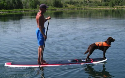 Paddle Boards - An Operators Recovery Tool