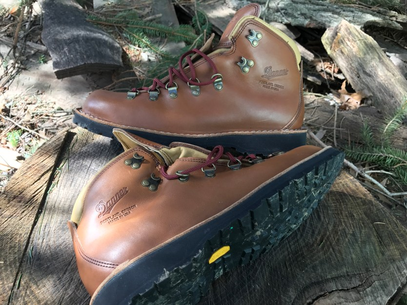 Danner Mountain Pass Boots | Quick Look