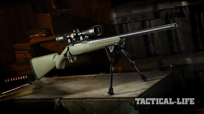 Ready to Pounce: The 6.5 Creedmoor Ruger American Predator Rifle