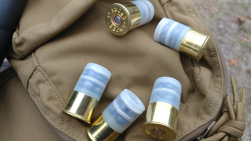 More Minishells - Exotic Products Mixed Buck