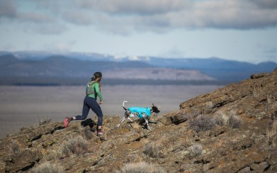 Ruffwear Launches All New Performance Dog Gear for Fall/Winter 2018