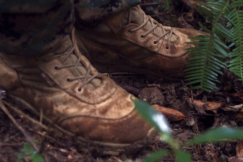 Combat hunter tracks prey: 3rd Recon Marines learn techniques of a predator