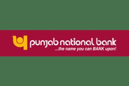 Image result for pnb logo transparent