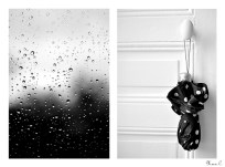 Diptyque La pluie