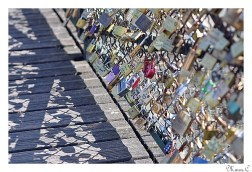 Pont des Arts ~ 5 ~