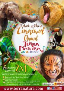 Cartel Carnaval Terra Natura