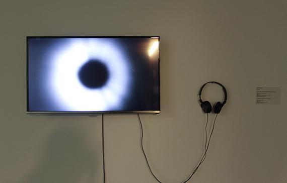 """Grabaciones de vídeo se incluyen tambien como un recurso en """"Principia"""". Foto: Roberto López."""