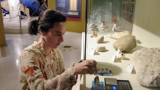El Museu Paleontològic d'Elx és pioner a testar un nou sensor d'humitat elaborat amb col·làgen
