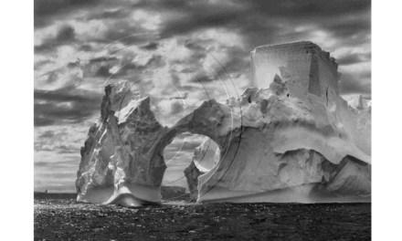 Sebastião Salgado porta el seu art als carrers d'Alacant amb la seua obra «Génesis»
