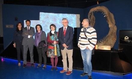 El MUPE participa com a jurat en un Premi Internacional de Paleontologia