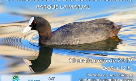 El Ayuntamiento de Alicante conmemora el Día Mundial de los Humedales con un programa de actividades didácticas en el parque La Marjal