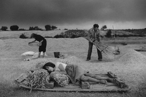«la Caixa», la Fundació Vicente Ferrer i l'Ajuntament d'Alacant inauguren l'exposició fotogràfica Terra de somnis