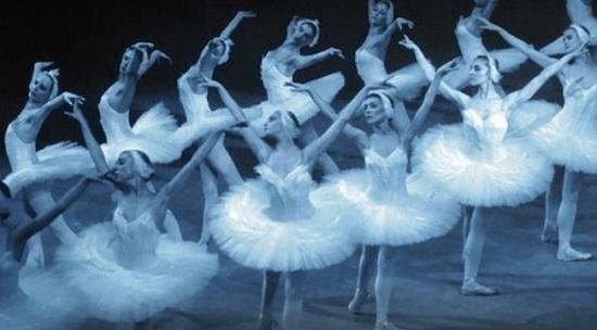 Una veintena de espectáculos para la nueva temporada del Auditorio de Torrevieja