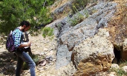La Sociedad Española de Paleontología publica el modelo de gestión del MUPE de Elche