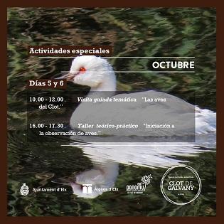 El Clot de Galvany de Elche se prepara para celebrar el Día Mundial de las Aves Migratorias 2019
