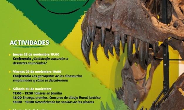 El Museo Paleontológico de Elche celebra su XV aniversario con una serie de conferencias y actividades para toda la familia