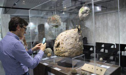 El Museo de Biodiversidad de Ibi registró 13.188 visitantes el pasado año