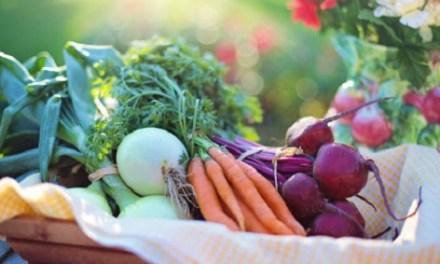 """Se abre el plazo para el Taller """"La alimentación mediterránea: nuestra mejor aliada para una vida saludable"""""""