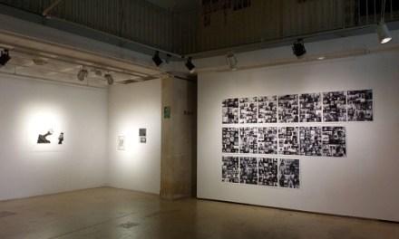 El Centre 14 reobri la seua programació d'exposicions amb una mostra de retrats virtuals de l'artista Adela Rafaghelli